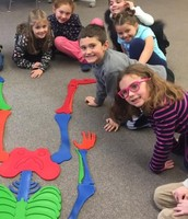 First graders at Brewster School learning about the human body and exercise