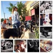 On-Wheels @ Fullsteam Brewery - 726 Rigsbee Ave. | Durham, NC | 27701 - $50