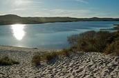 honeyeater lake