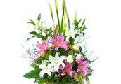 Flower Delivery Services in Noida and Greater Noida