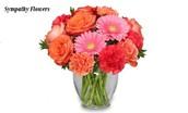A Helpful Breakdown of Straightforward Ideas For Sympathy Flowers