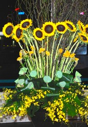 In a corporate environment,flowers symbolize continued growth and prosperity.
