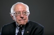 Baby Bernie to Senator Sanders