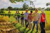 Phnom Penh CEDAC Farm Immersion