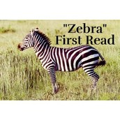 Zebra by: Chaim Potok