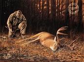 poor deer #3