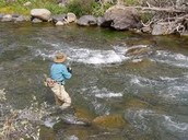 What are some fishing hotspots? Why do fish like thee special places?