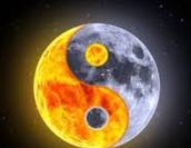 Ying and yang spinning ride!