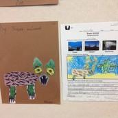 Ocean, Desert or Rainforest