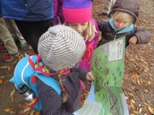 reading the map on a field trip to Plimoth Plantation