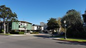 Pelham Avenue