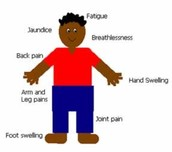 5. What are the symptoms?