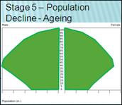 Population Pyramid - Stage 5