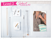 Level 2 JK Incentive $1000+ in Sales