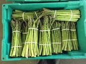 Oh, asparagus...