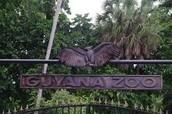 Guyana National Zoo