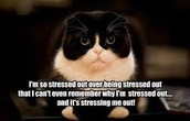 The definition of STRESS is...