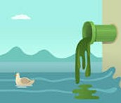 How Water Pollution is Caused