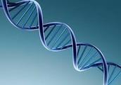 Is autism genetic?