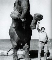 Ernest w/ Elephant