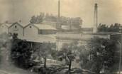 Fábrica de tanino en el Chaco en 1945