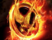 Once again it is time to show them who rules Panem!