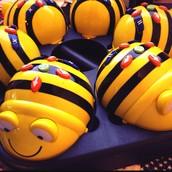 BEE-BOT APP & ROBOTS