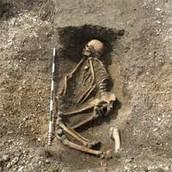 An Anglo-Saxon skeleton