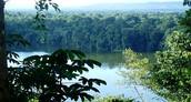 El Parque Nacional Madidi