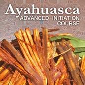 Ayahuasca Courses Peru