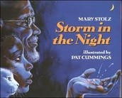 """What do you think an Onamonapia is?  Write your best guess answer down on your google doc.  Title your doc, """"Storm in the Night"""""""