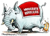 Republican with moderate social views