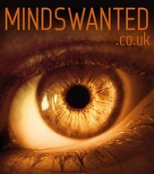 Minds Wanted Marketing Website