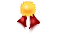 Best Work Award