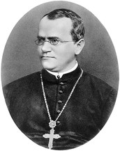 Description of Gregor Mendel