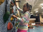 Climbing Wall Challenges Students