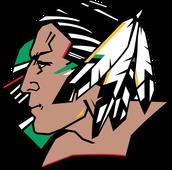 North Dakota hockey team the sioux
