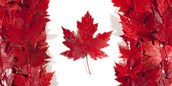 Canada: the best place to live?