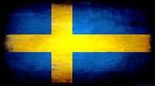 What language they speak in sweden...