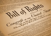 Bill of Rights Scenario