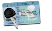 G2 License