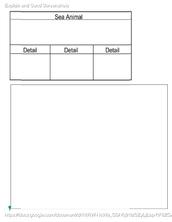 Sea Animal Planning / Drawing Worksheet