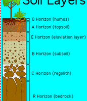 Soil Layers