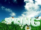 Komende CINEMA testen wij jouw lentekriebels