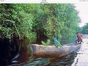 River in Guyana