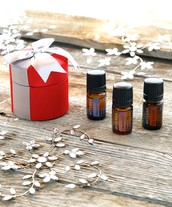 Join us for an Holiday Aromatic Craft Day!