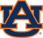 #2 Auburn University