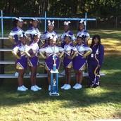 Cheer Division 15