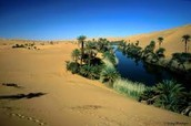 one of Libya's deserts