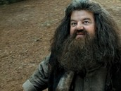 Hagrid: game keeper and keeper of the keys at hogwarts